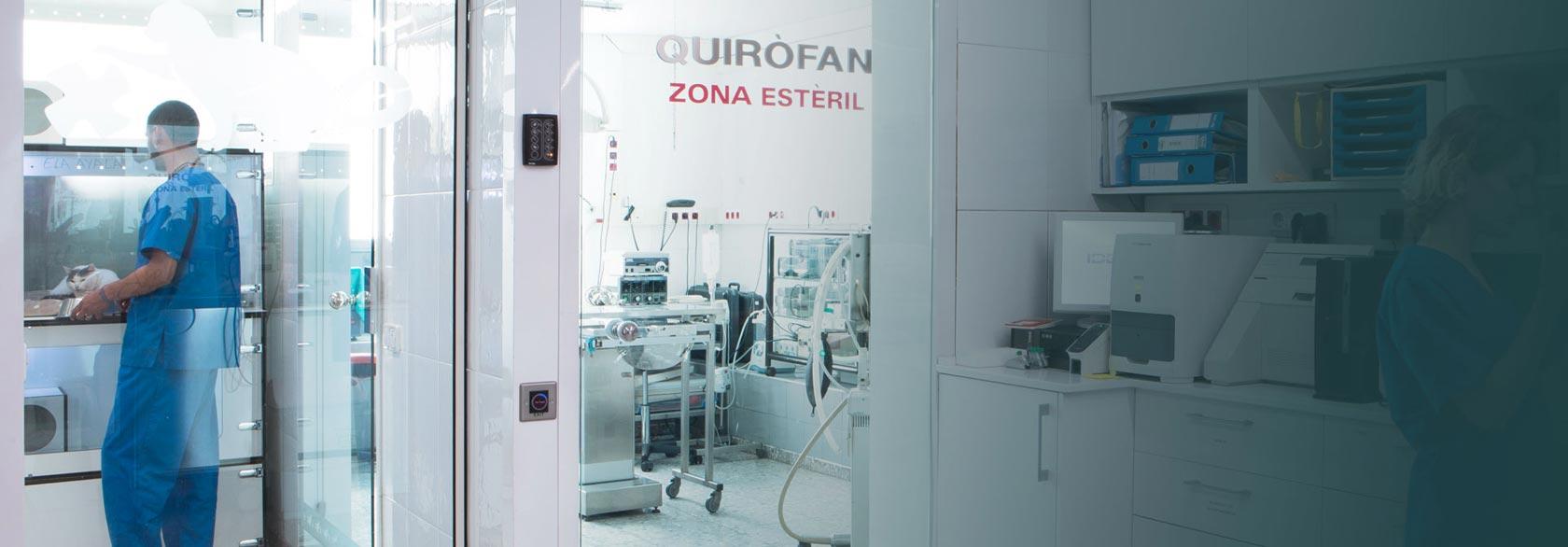 Hospital de Urgencias Veterinarias abierto 24h