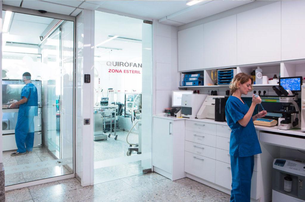 Cirugía veterinaria SURvet