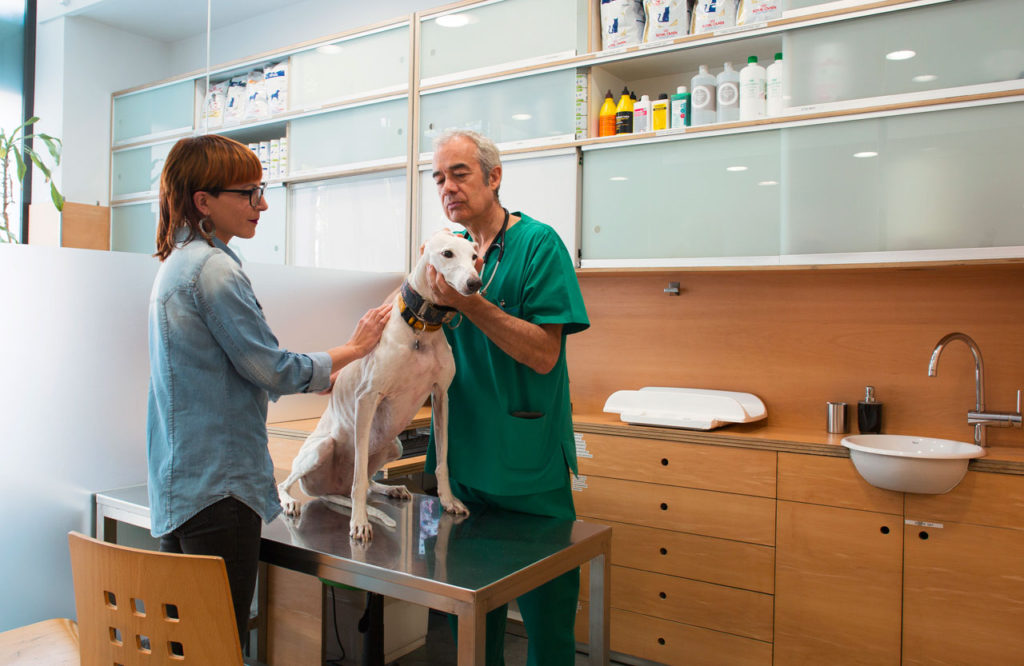 Hospital Veterinario en Barcelona - Diagonal